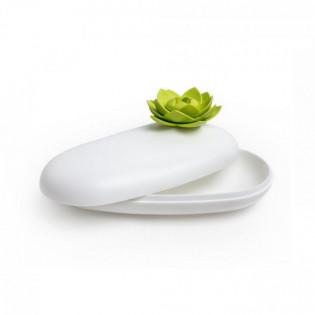Многофункциональная шкатулка Lotus Pebble Box Qualy Белая / Зеленая
