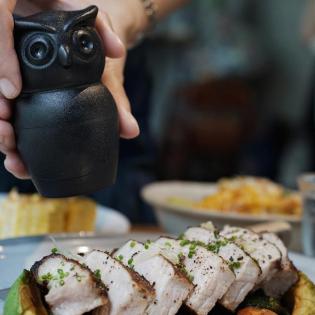 Мельница для соли или перца Tasty Owl Qualy Черная